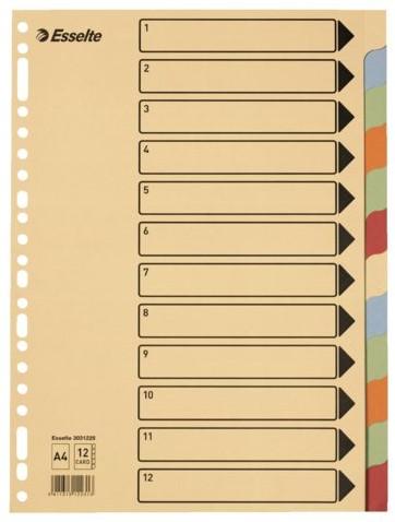 Tabbladen Esselte A4 23-gaats karton 12-delig assorti